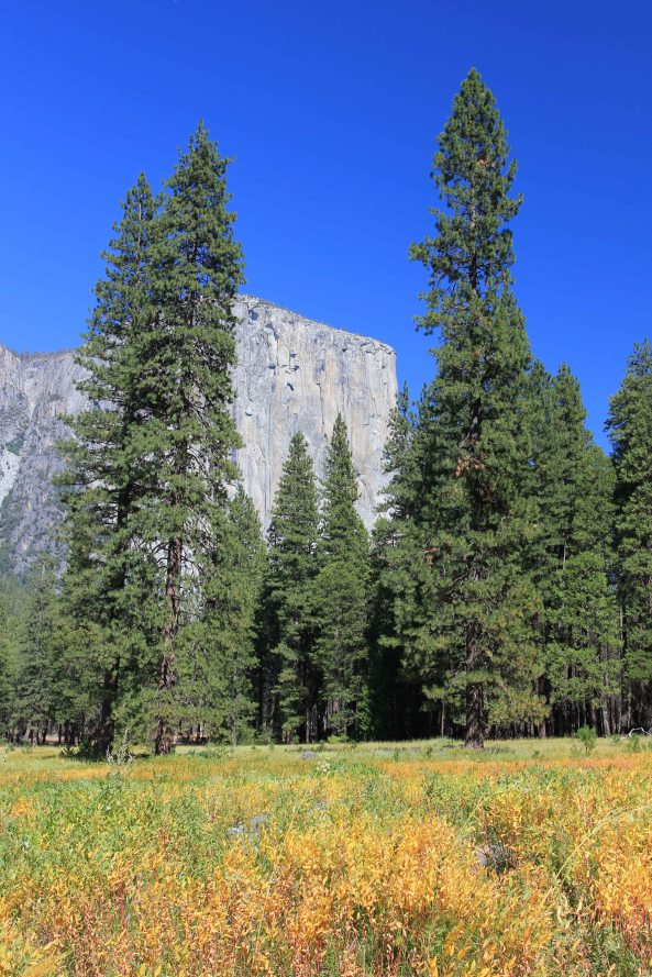 El Capitan, Yosemite, national Park, California, Photography, Landscapes
