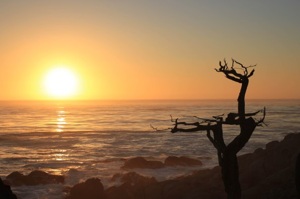 Sunset, California, 17 Mile Drive, Photography