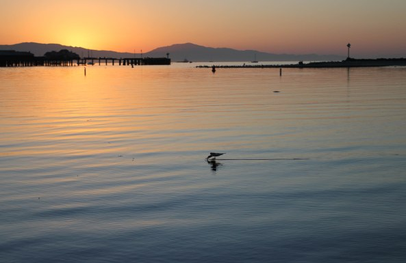 Santa Barbara, Sunrise, Dock