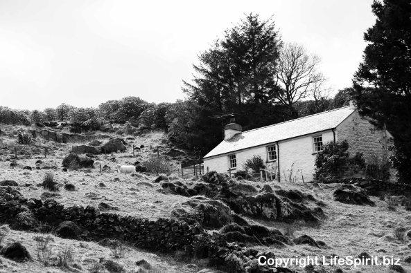 Beddgelert, Life Spirit, Mark Conway, Snowdonia National Park