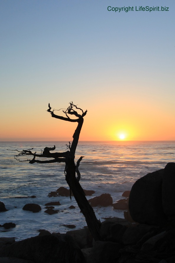 17 Mile Drive, Sunset, California, Monterey, Life Spirit, Mark Conway