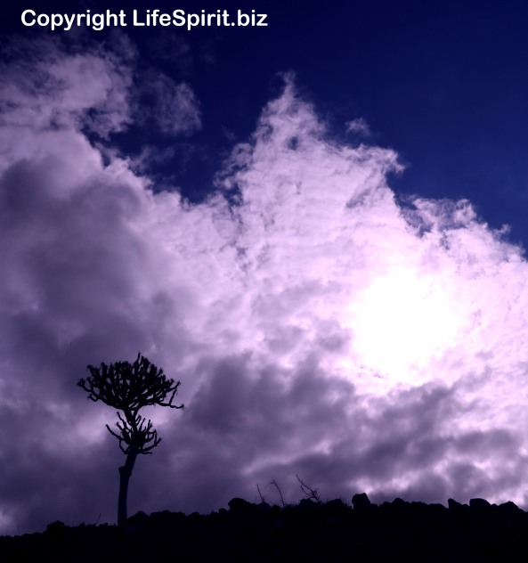 Life Spirit, Landscapes, Mark Conway, Life Spirit, Gran Canaria