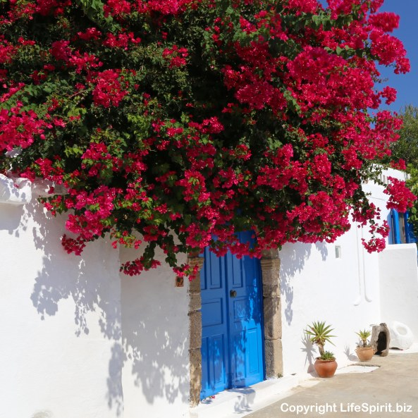 Rhodes, Door, Greece, Flowers, Nature, Mark Conway, Life Spirit