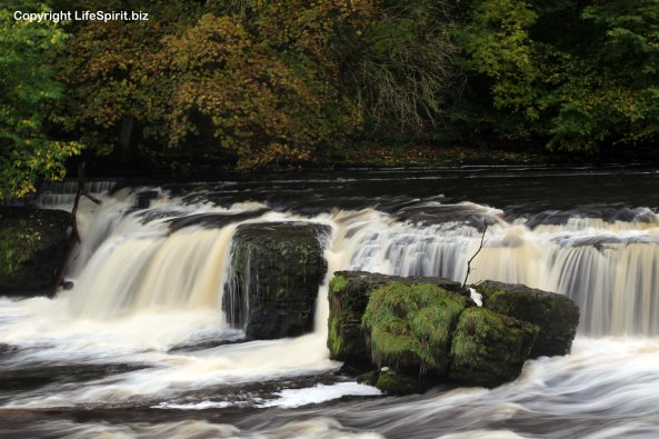 Aysgarth Falls, Yorkshire Dales, River Ure, Mark Conway, Nature, Landscape, Life Spirit