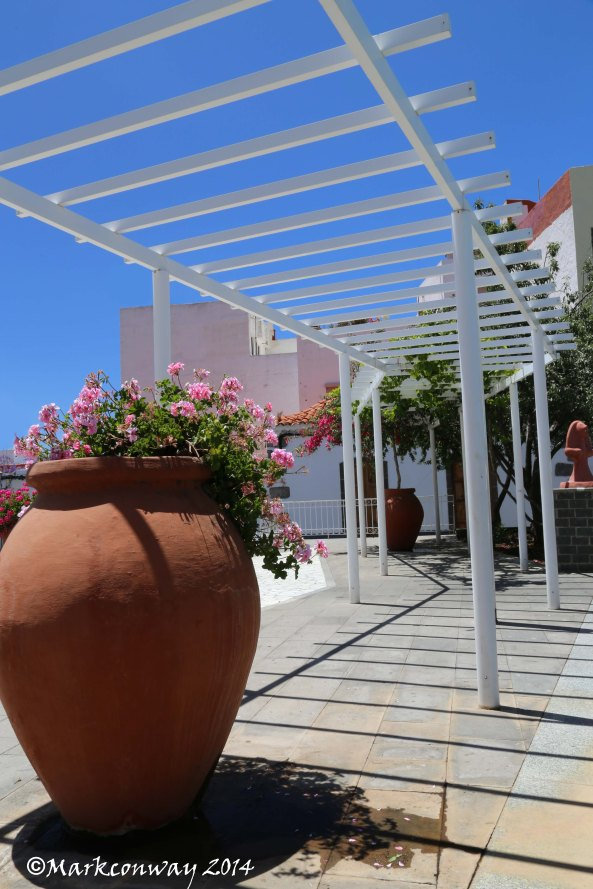 Gran Canaria, Flowers, Landscape, Nature, Photography, Mark Conway, Life Spirit