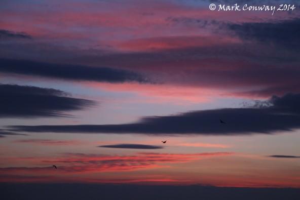 Abersoch, Llyn Peninsula, Wales, Sunrise, Nature, Photography, Mark Conway, Life Spirit