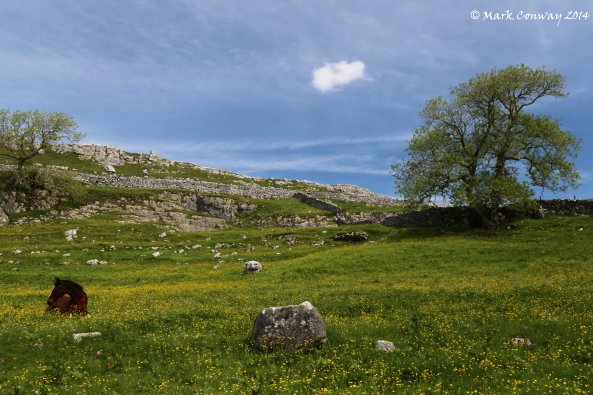 Yorkshire Dales National Park, Landscape, Mark Conway, Nature, Life Spirit