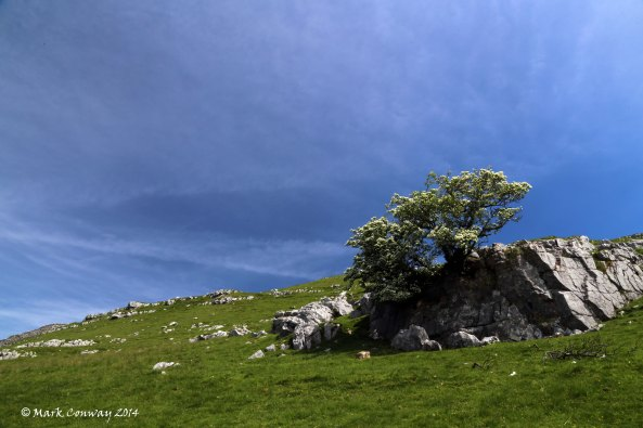 Landscape, Yorkshire Dales, Ingleton, Nature, Photography, Mark Conway, Life Spirit