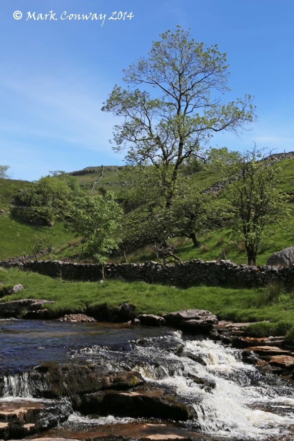 Yorkshire Dales, National Park, Ingleton Falls, Nature, Photography, mark Conway, Life Spirit